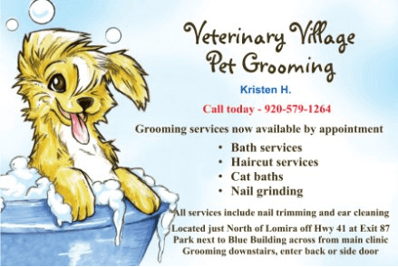 Veterinary Village Pet Grooming
